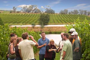 Yarra Valley Vineyards Wine Tours