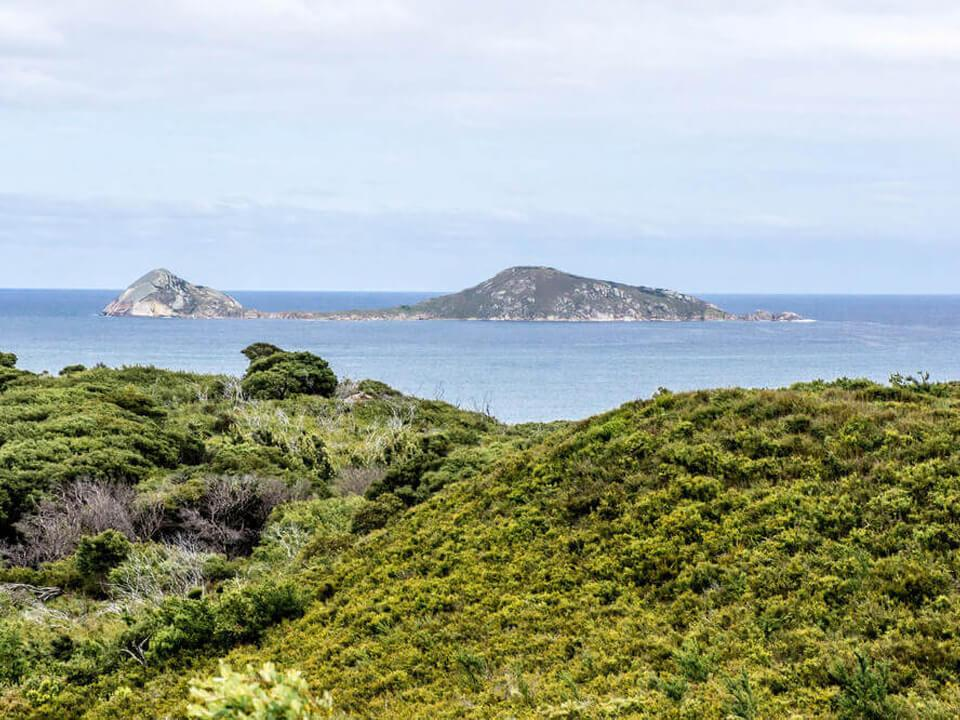 Copy of Wilsons Promontory National Park