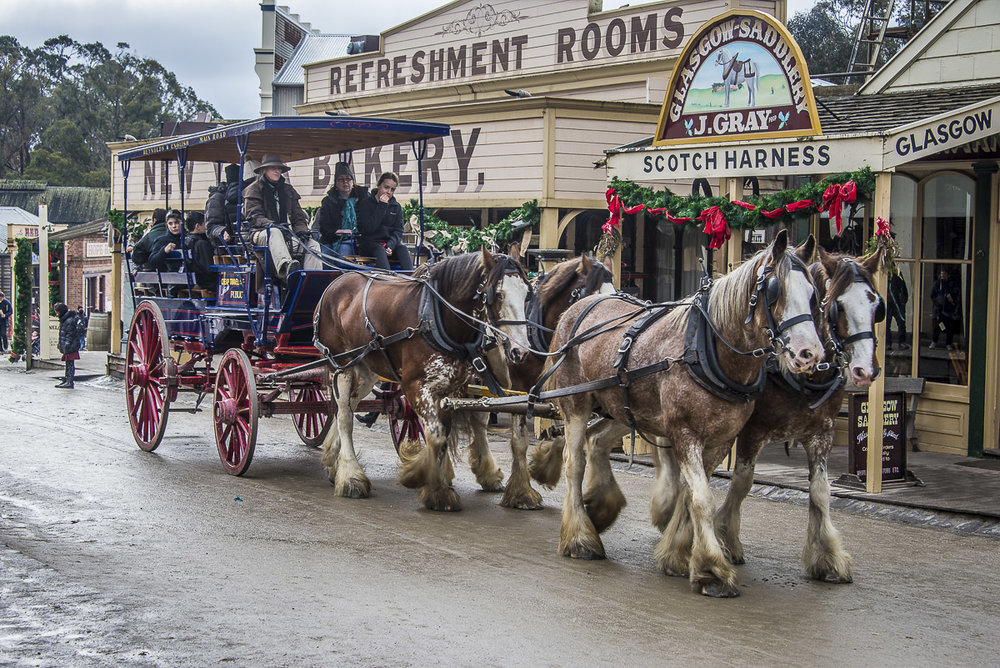 Winter Wonderlights -Sovereign Hill