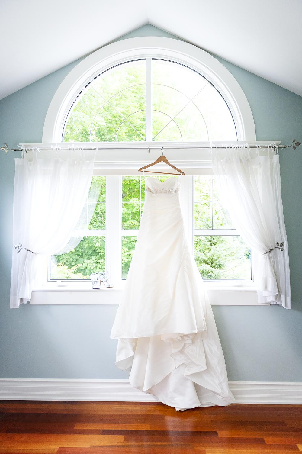 20150621 - The Dress.jpg