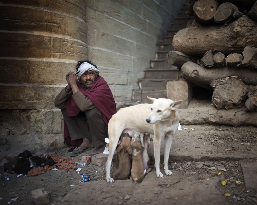 20151216 - Varanasi (Romulus and Remus).jpg