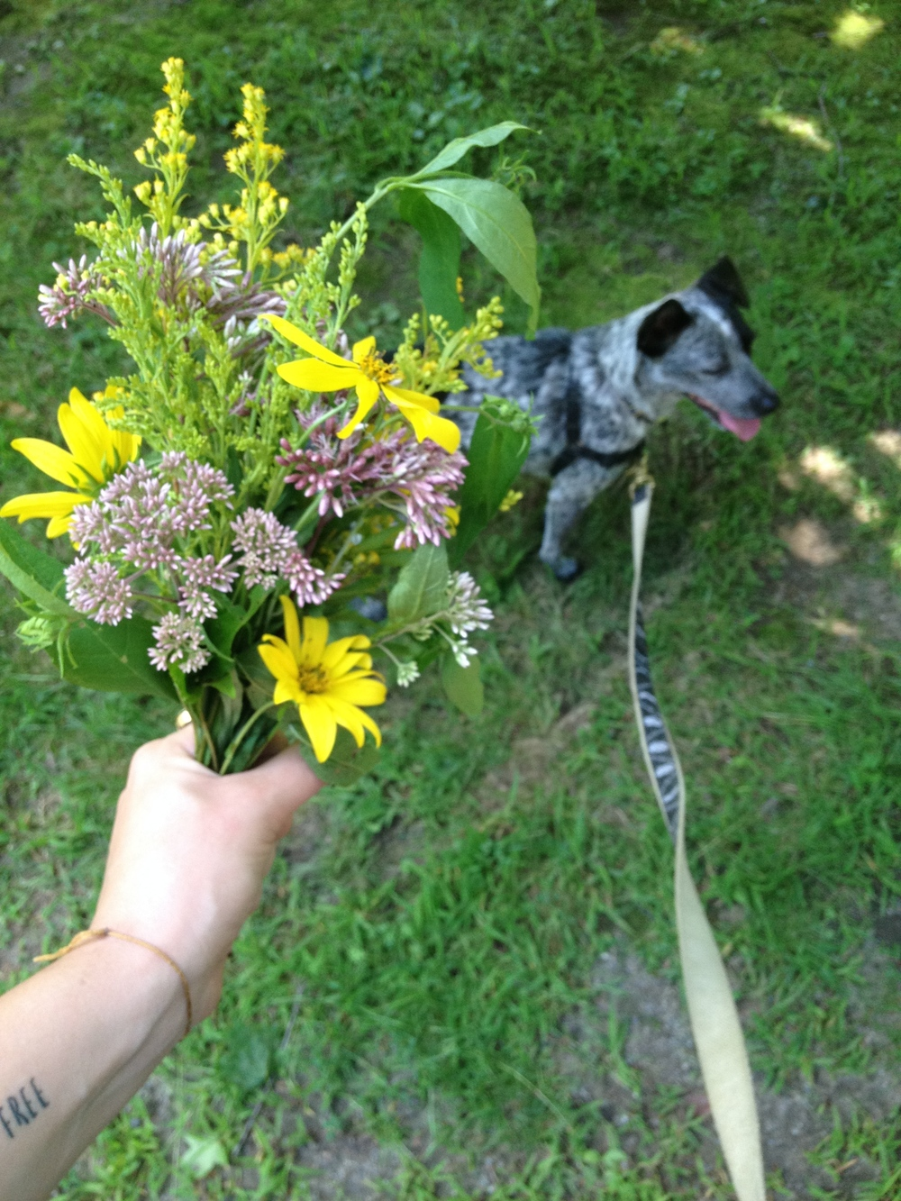 after swimming with friends and puppies and babies, i gather some flowers.  i don't keep them for myself but give them away.