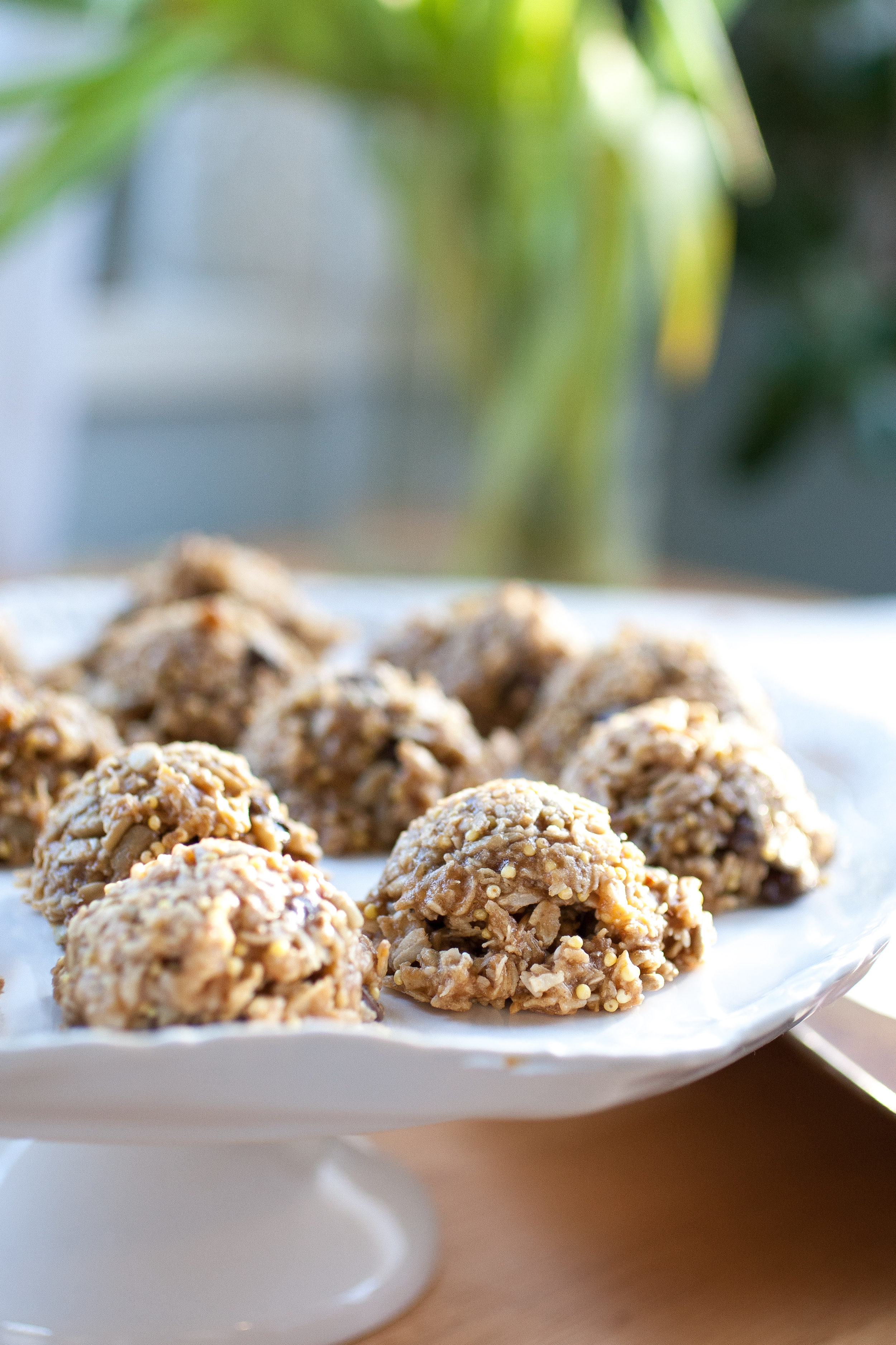 Produce On Parade - Birdseed Cookies