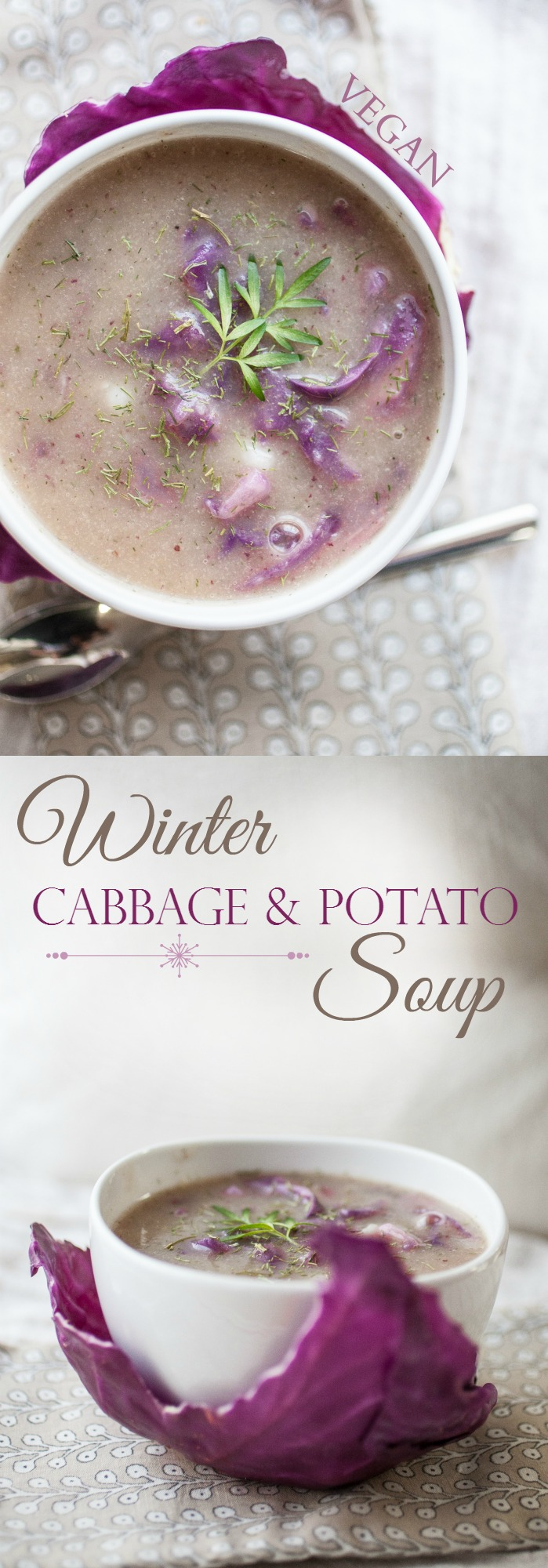 Produce On Parade - Winter Cabbage & Potato Soup - A luscious, blended vegetable soup with hearty chunks of potatoes and cabbage. Kissed with dill and coriander, and ready in a flash.