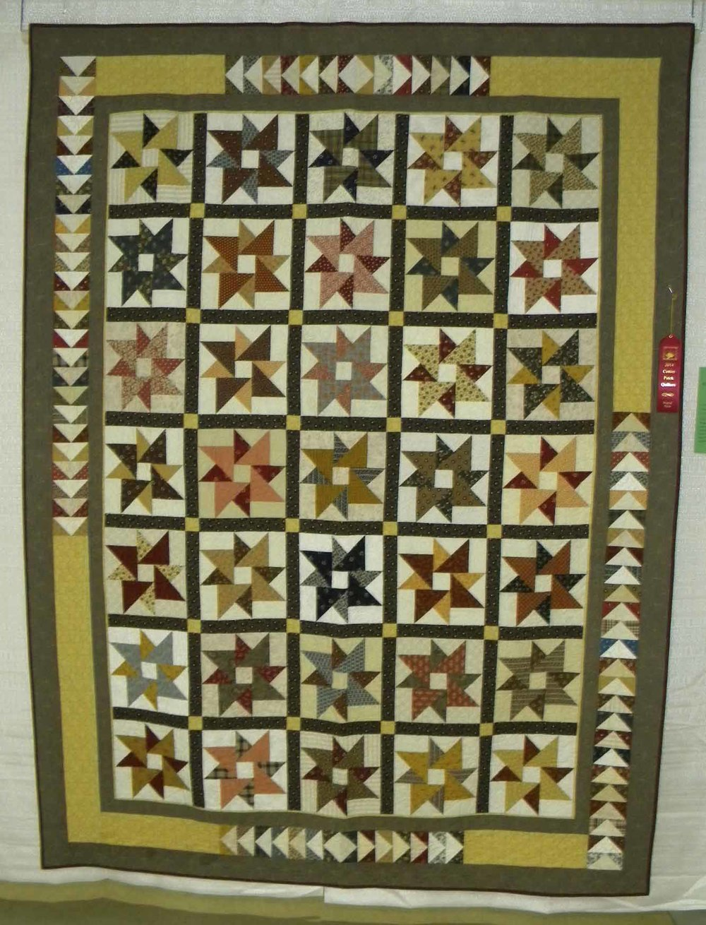 2nd Pieced-Large.  Goose Bumps by CeCe Westerfield