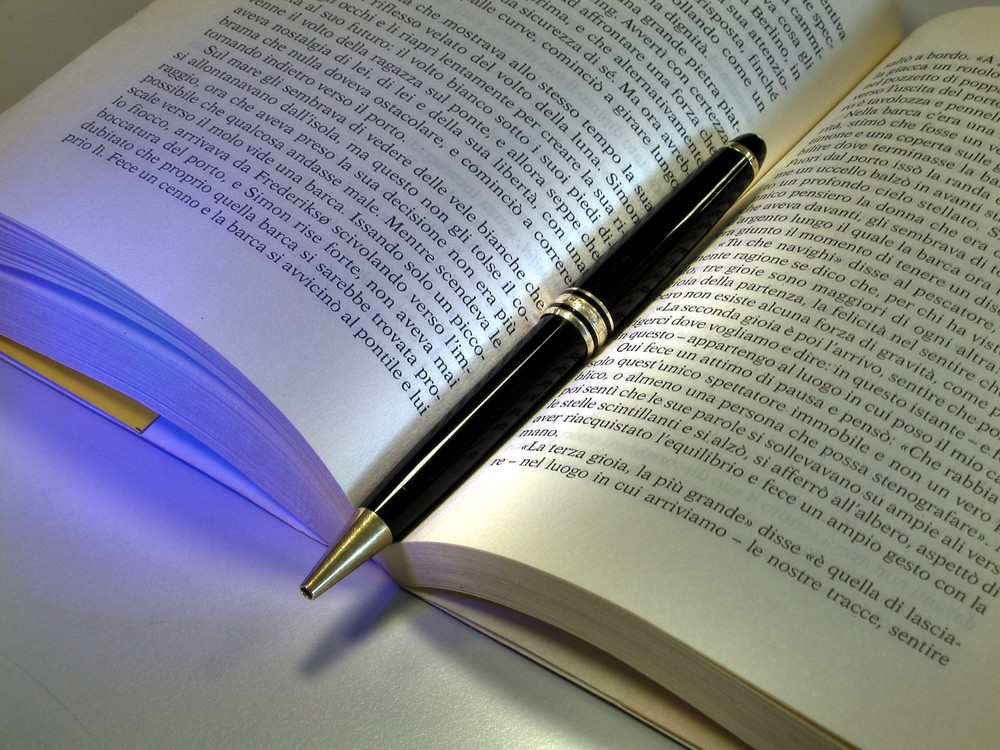 best book for essay writing for ias