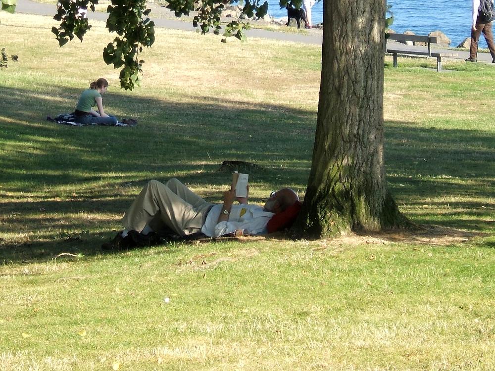 Man reading image