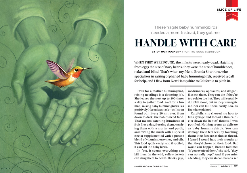 Handle With Care Readers Digest Chris Buzelli