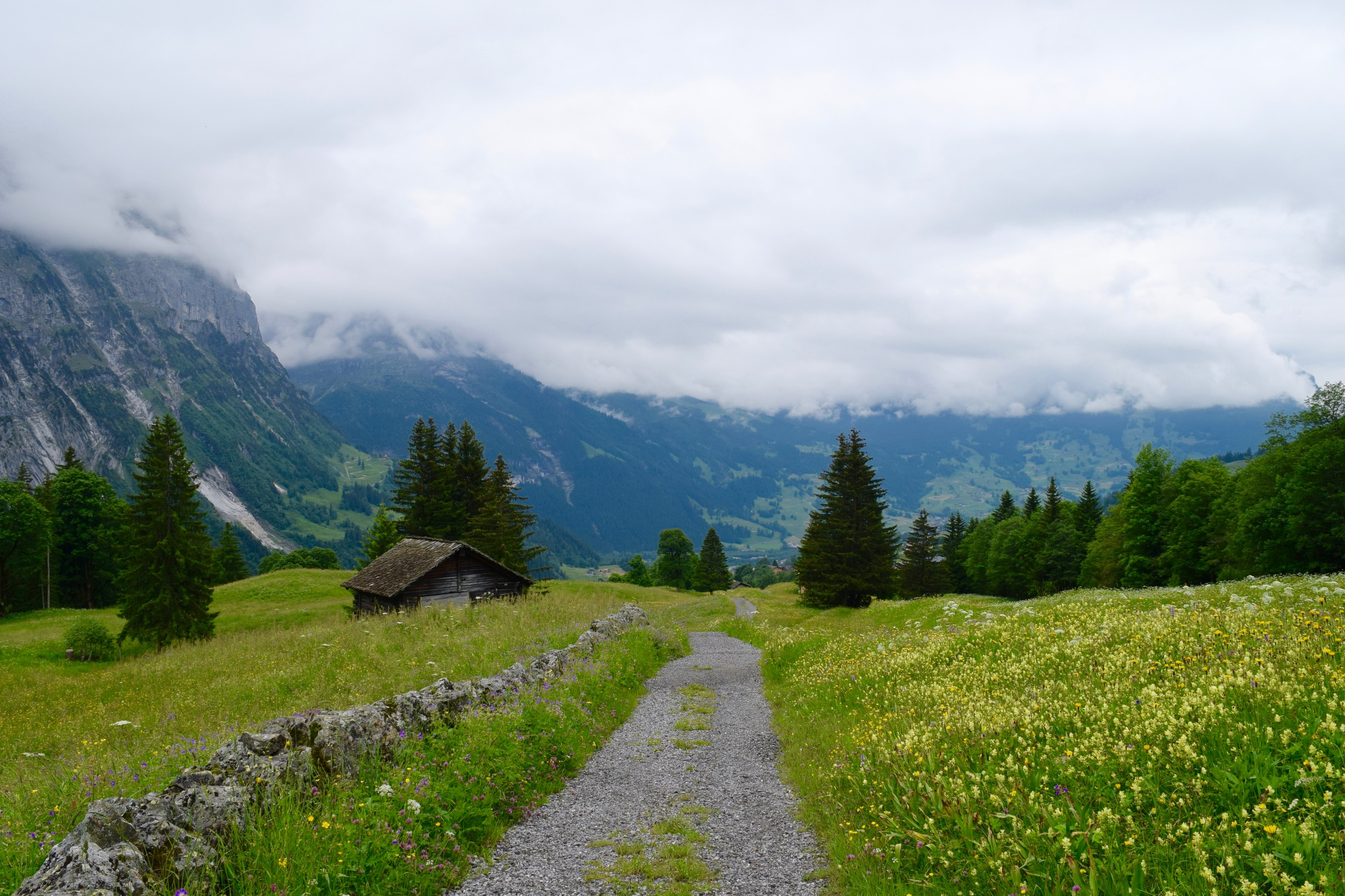 A Day Hike From Meiringen To Grindelwald On The Via Alpina Lucy Fuggle - Hotel alpina grindelwald
