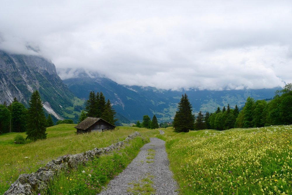 Meiringen to Grindelwald in July