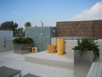 Rialto roof deck - planters.jpg