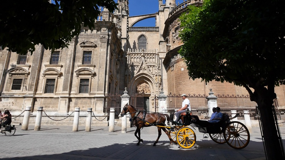 Seville Cathedral With Horse And Carriage Passing◹