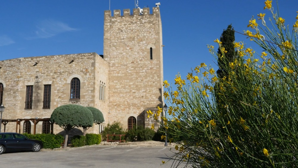 Spain Tortosa Castle Tower And Spanish Broom◹