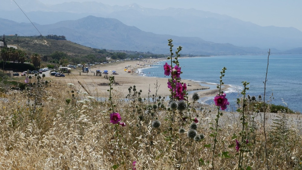 Greece Crete Aegean Coast With Hollyhocks And Beach◹