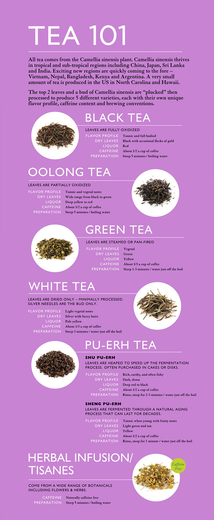 Teatulia Tea 101
