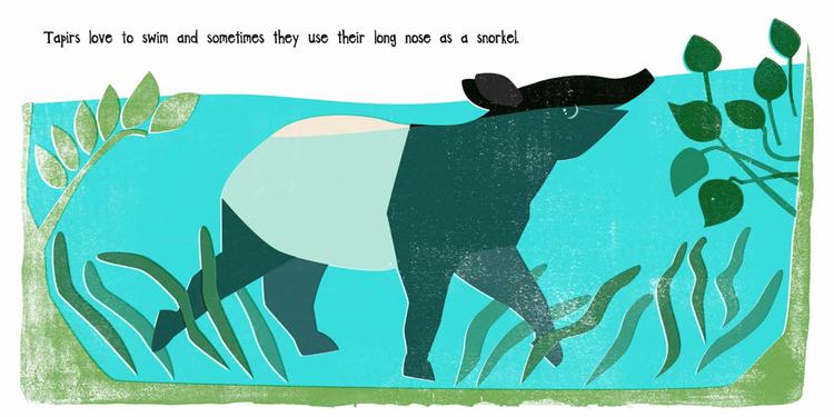 unusual-animals-tapir.jpeg