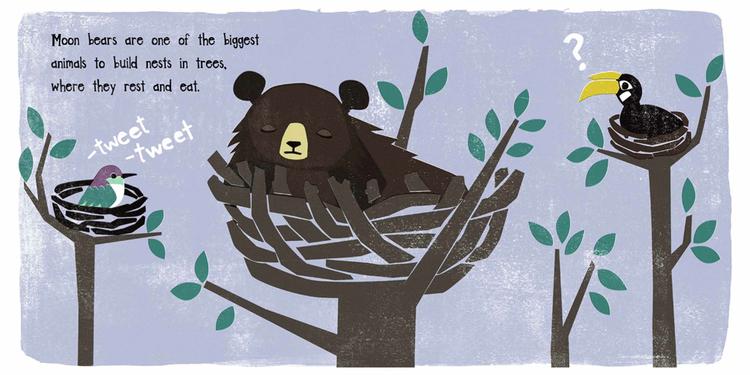 unusual-animals-moon-bear2.jpeg