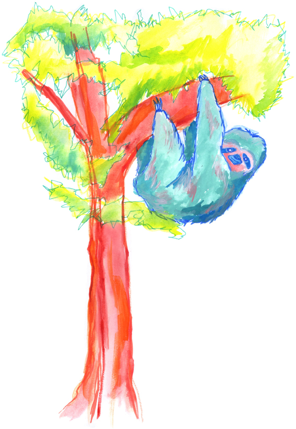 blue sloth in tree illustration painting drawing