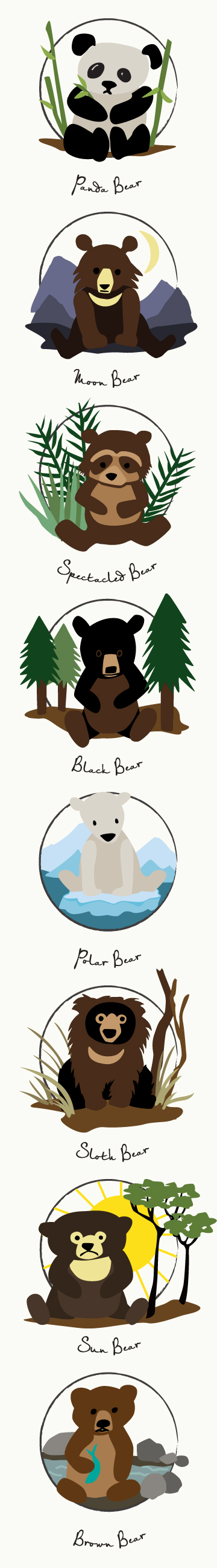 Bear Species Illustration