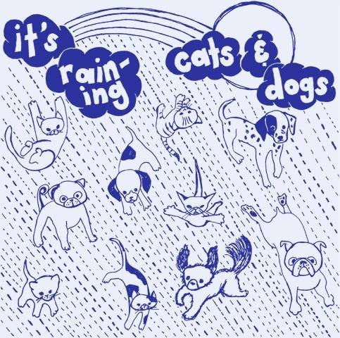 raining-cats-and-dogs.jpg