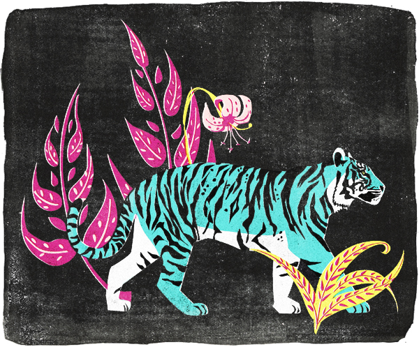 Sumatran_Tiger_katy_tanis.jpg