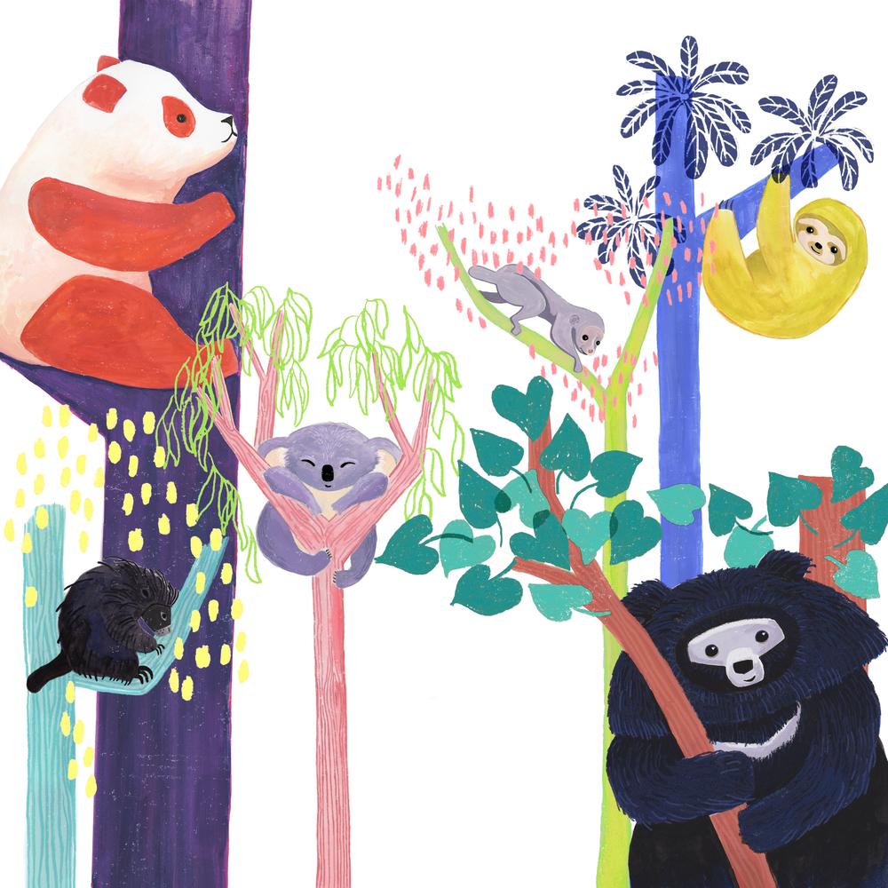 KatyTanis-slow-moving-tree-dwelling-animals.jpg
