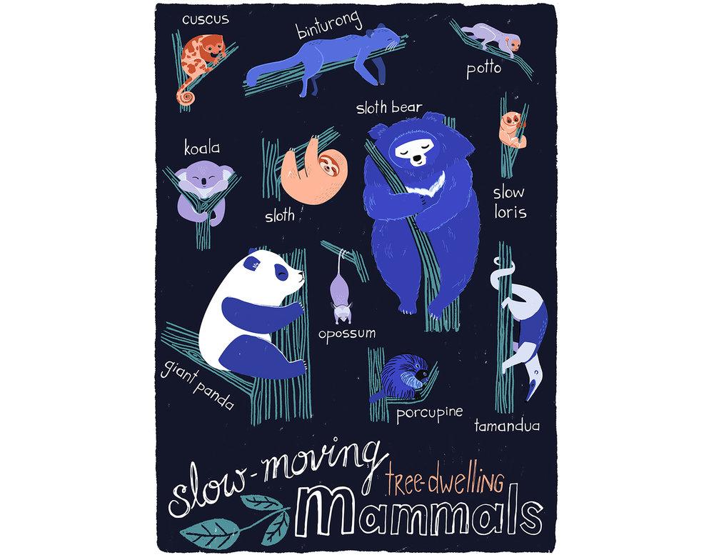 Slow-Moving-Tree-Animals-Katy-Tanis.jpg