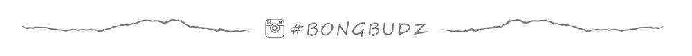 #bongbudzIGgrey.jpg