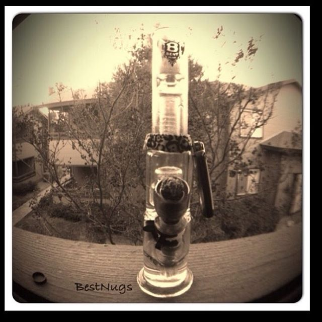 #throwback Photo credit @bestnugs with the #stevefrench #bongbudz.