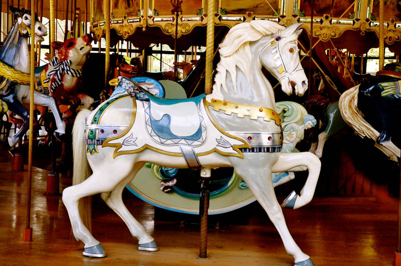 Herschell-Spillman Carousel at Golden Gate Park