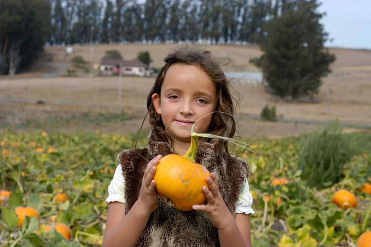 FIND THE BEST PUMPKIN PATCHES OF 2015.