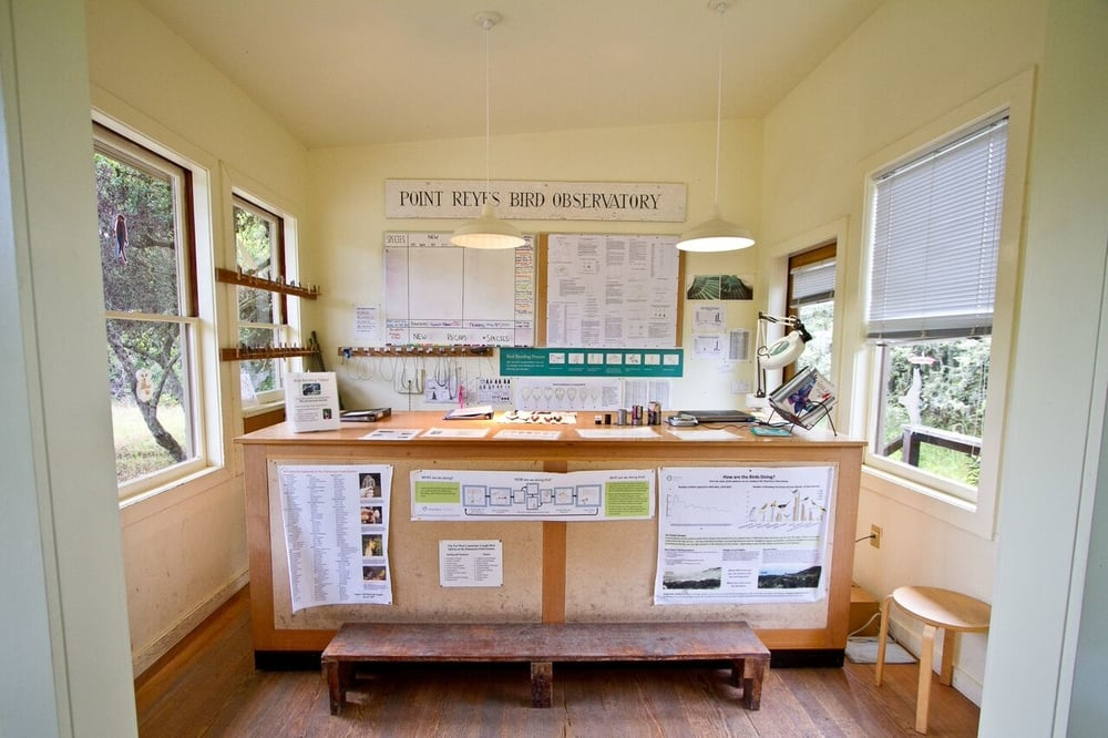 The bird banding lab at POint Blue's Palomarin Field Station where visitors are welcomed to observe science in action. credit: Annie Schmidt/Point Blue