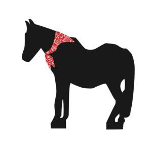 blackie-scarf-1.jpeg
