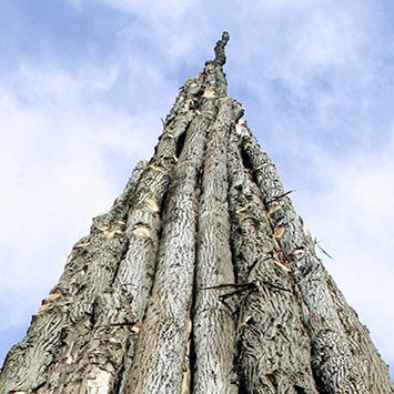 goldsworthy-spire-tip.jpg