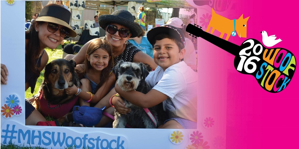 Woofstock at the Marin Humane Society