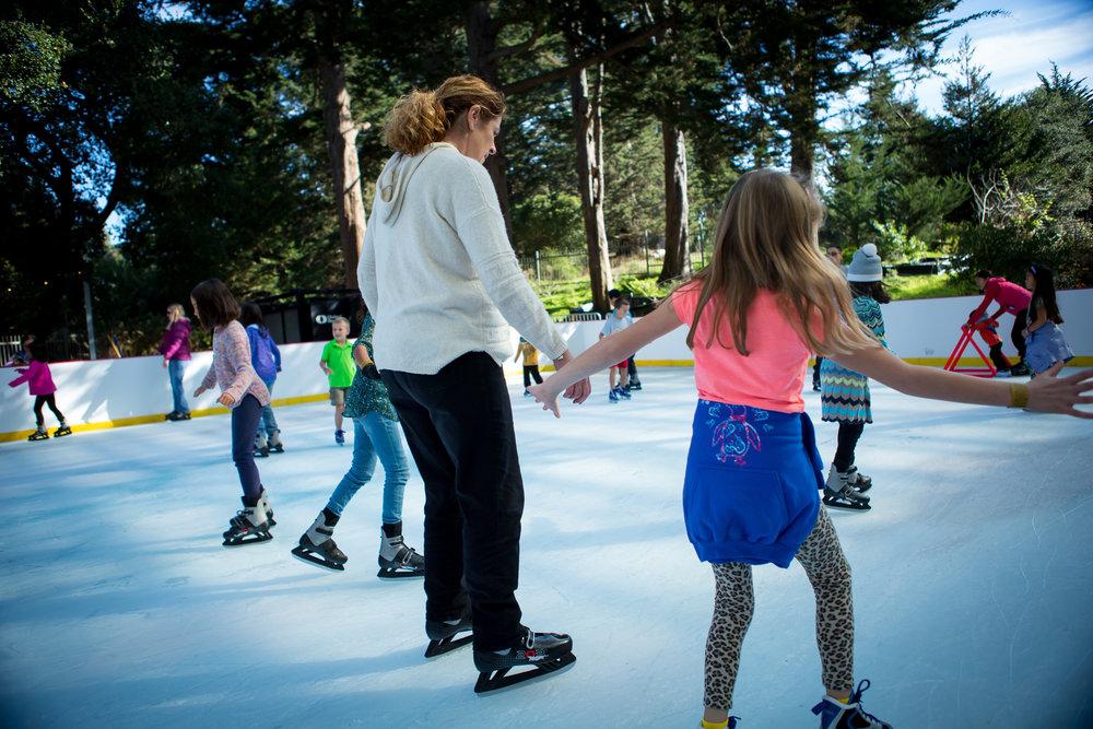 Skating 4 © 2017 California Academy of Sciences.JPG