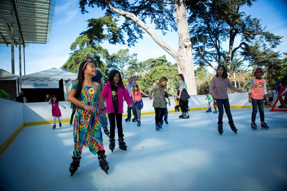 Skating 5 © 2017 California Academy of Sciences.JPG
