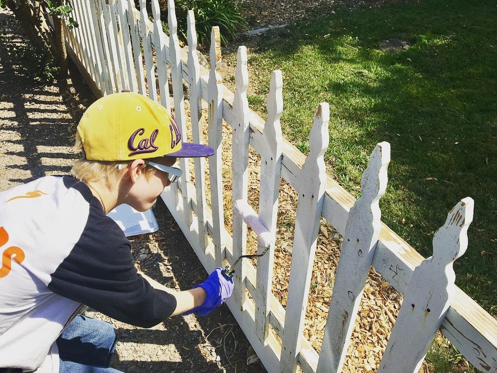 Local Organizations - Choose a local organization that your whole family supports and wants to rally behind. Our family learned about DXE SF Bay Area Animal Care whose belief is that every animal has an equal right to be safe, happy and free. Shown is Jack helping paint a fence at Charlie's Acres Animal Sanctuary where Matt, Jack and I volunteered this weekend through DXE. Charlie's Acres dedicates itself to the care of rescued farm animals. #dxe #charliesacres #littlethings #littleactsbigchange #volunteer #animalrights #instaday #instagood #family