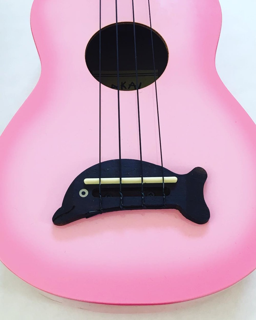 Play an Instrument - Take up a new instrument you've always wanted to learn. Playing an instrument enhances memory, builds confidence, widens your social circle and improves patience. Shown here is our new family member: a pinkalicious ukulele. #littlethings #littleactsbigchange #learning #ukulele #somethingnew #pink #marincounty #inspiration #instagood 🎶