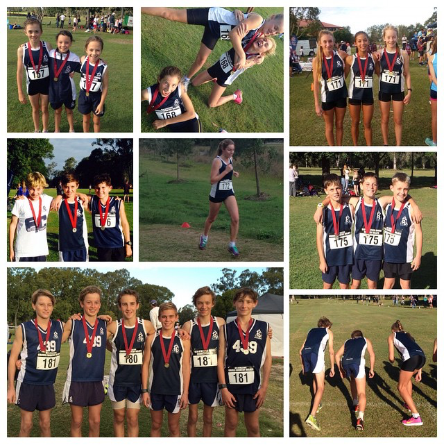 XC Collage.png