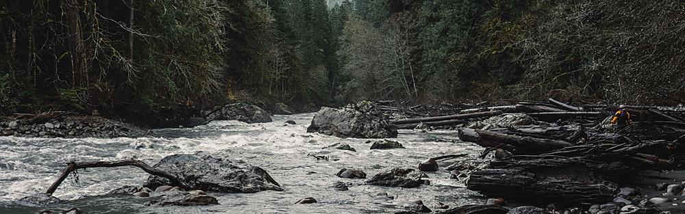 River_Wet_0004.jpg