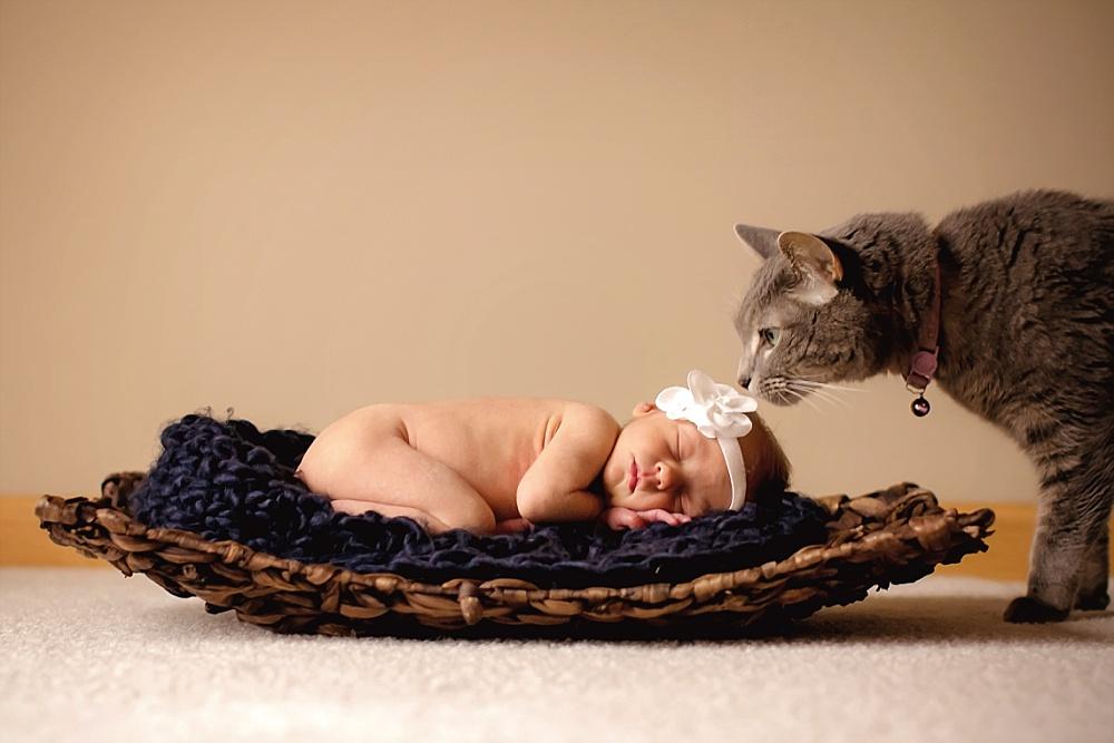 Baby-Haven_0003.jpg