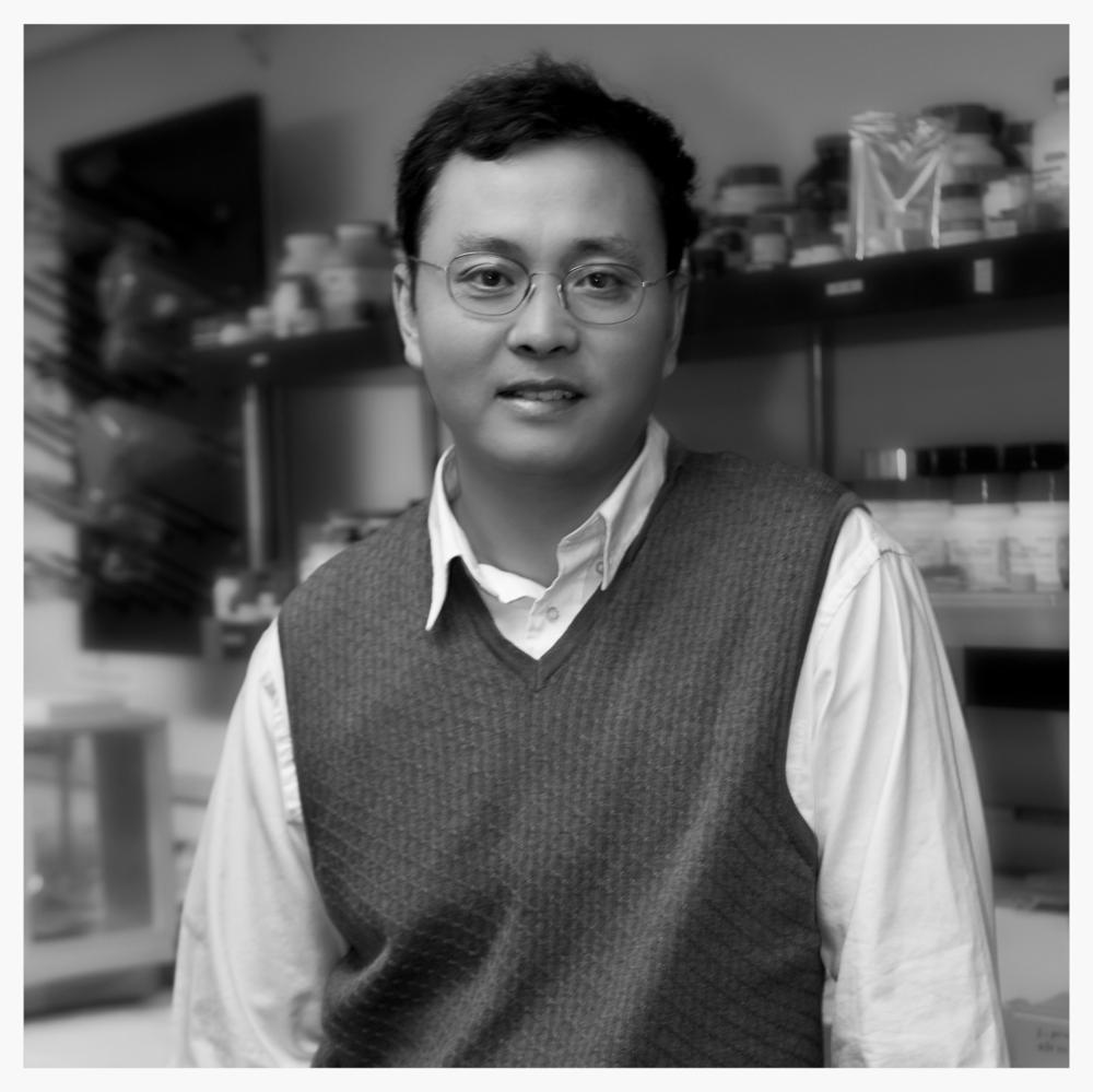 Professor Hongjie Dai, Stanford
