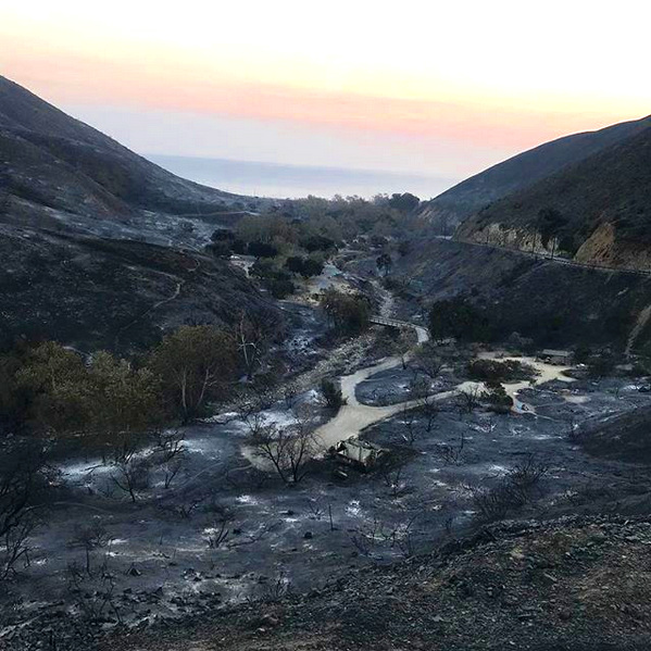 Leo Carillo State Park campgrounds devastated by the Woolsey fire- Malibu, CA 📷: Sgt. John Regan, CA State Parks, Lifeguard Supervisor, Angeles District
