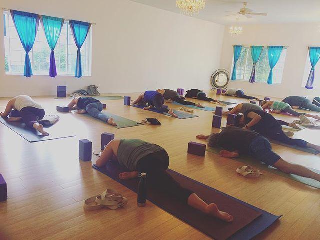 Find me over @mandala.yoga.center this week! Subbing Ms.@charityjoymovement's Monday evening 5:30 class & Lois' Friday 3pm! ✨✨✨ #Findyourflow #Eastendyoga #Amagansett #Yoga #Yogi #Yogaeverydamnday #Practice #Strength #Balance #Namaste #Fitspo #Pigeonpose #Hipopeners #Ekapadarajakapotasana #Sleepingpigeon #Vibehigher #Getlifted #Transcend #Hamptonswellness