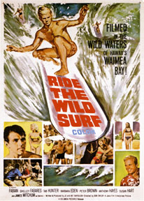 wild-surf-h245sm copie.jpg