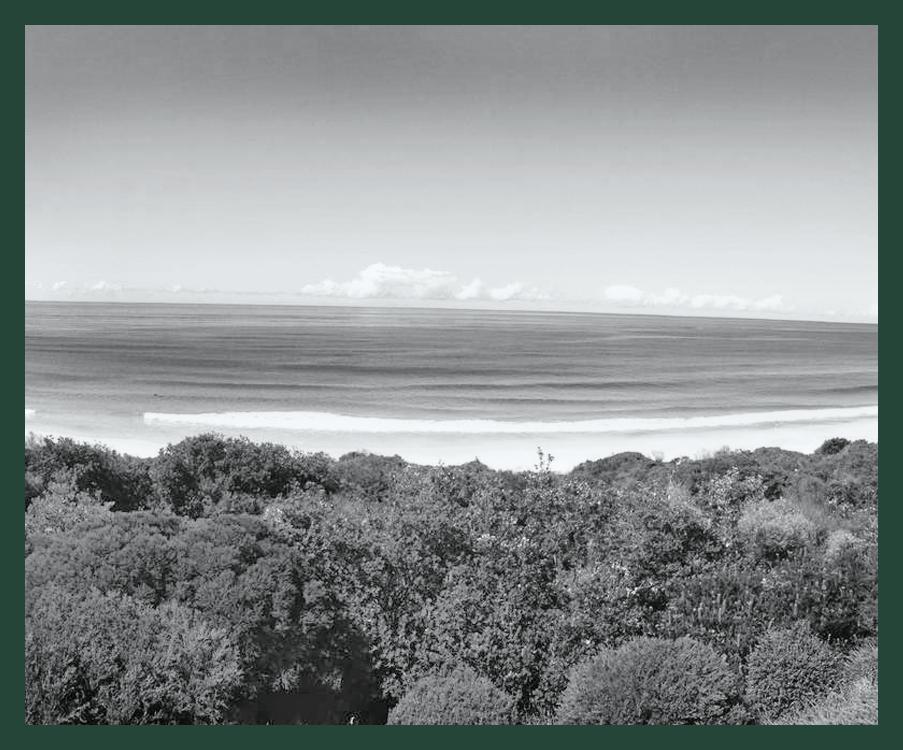 BOOMERANG   BEACH - 2018 - IN PROGRESSDESIGN DEVELOPMENT