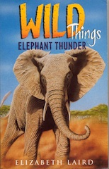 Elephant Thunder small.jpg