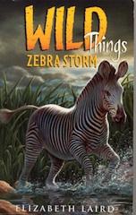 Zebra Storm small.jpg