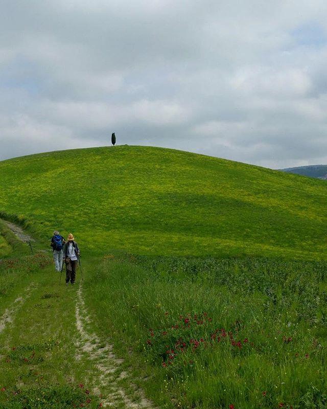 Il richiamo della Toscana continua insistente. #camminando